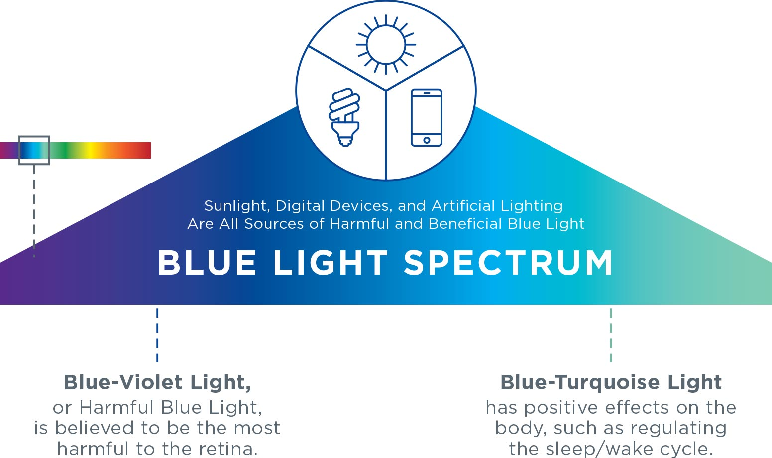 BLUE LIGHT SPECTRUM. Blue-Violet Light, or Harmful Blue Light, is believed to be the most harmful to the retina. Blue-Turquoise Light has positive effects on the body, such as regulating the sleep/wake cycle.